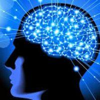 Kemampuan Intelegensi anak